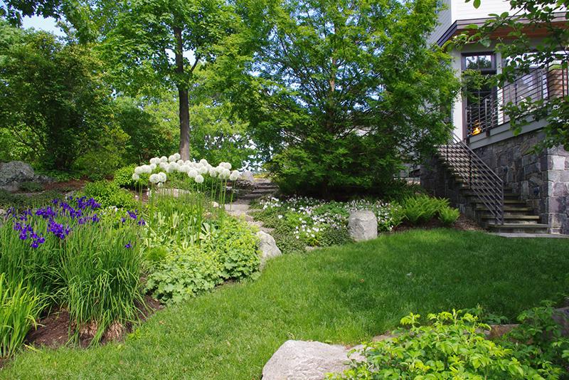 terra firma landscape architecture barndollar