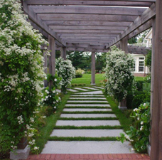 The Jalbert Residence: Pergola and Planting Design