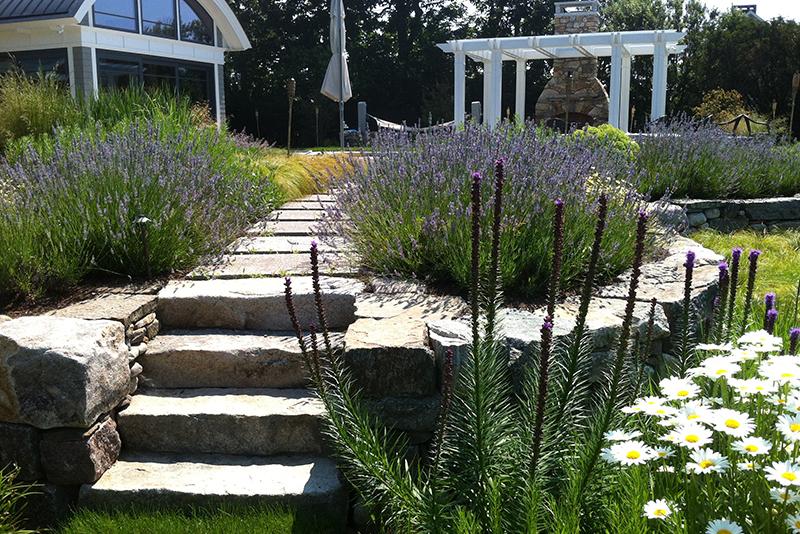 Terra firma landscape architecture straws point for Terra firma landscape architecture