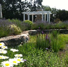 Terra Firma Landscape Architecture Projects
